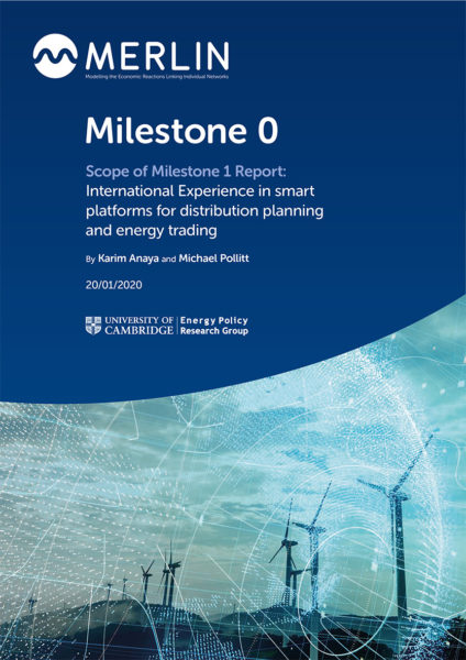 International Experience in smart platforms for distribution planning and energy trading