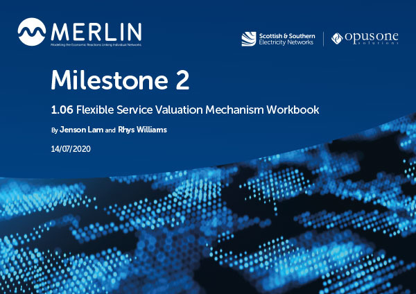 1.06 Flexible Service Valuation Mechanism Workbook